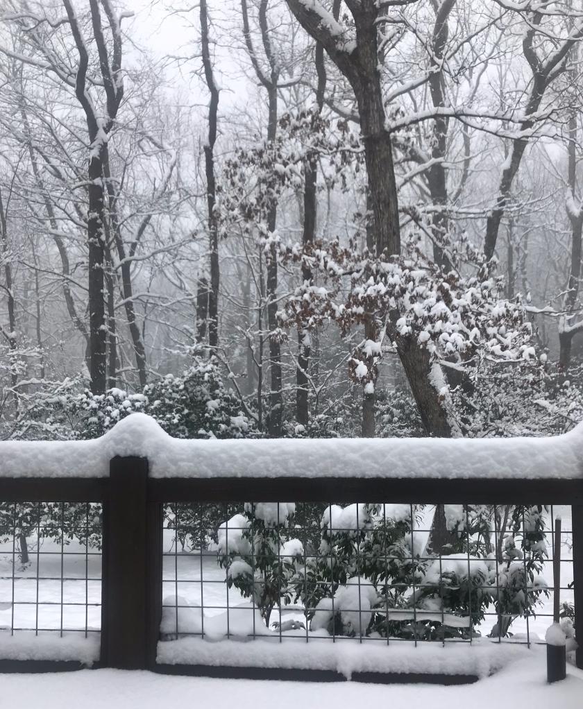 december-2017-0411.jpg